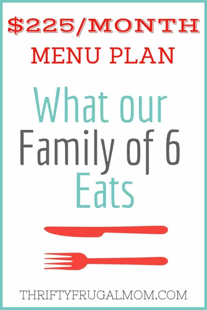 Meal planning on a budget? Let me help! Get ideas and inspiration from the frugal meals that our family enjoyed recently.